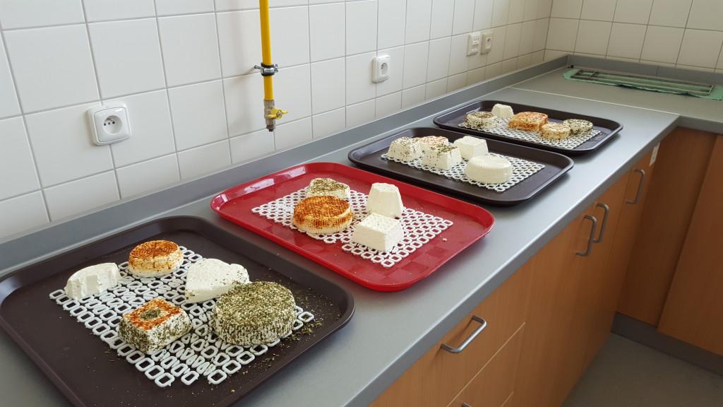 sýry výroba